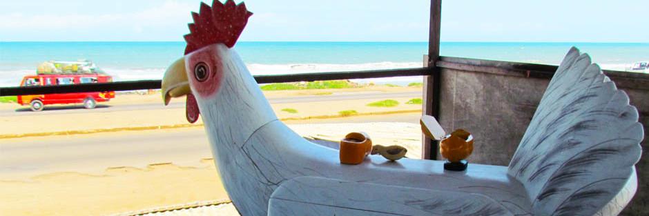 Ghana Chicken